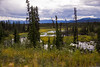Overcast day (VictoriaDitkovsky) Tags: alaska summer landscape nature