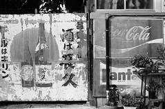 佐原_9 (Taiwan's Riccardo) Tags: 2016 japan chiba 135film bw negative rangefinder kodaktmax400 plustek8200i 日本 千葉 2016tokyovacation yellowfilter zeissikoncontessa35 fixed zeisslens 45mmf28 佐原 tessar