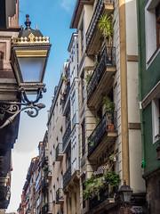 Beautiful Street Lights (katrin glaesmann) Tags: bilbao bilbo basquecountry spain bizkaia cascoviejo balconies plants