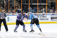 "Missouri Mavericks vs. Alaska Aces, December 16, 2016, Silverstein Eye Centers Arena, Independence, Missouri.  Photo: John Howe / Howe Creative Photography • <a style=""font-size:0.8em;"" href=""http://www.flickr.com/photos/134016632@N02/31717053906/"" target=""_blank"">View on Flickr</a>"