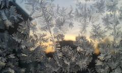 ice flakes (Londrina92) Tags: lombardia lombardy brianza ghiaccio fiocco fiocchi flakes frozen sunrise alba gennaio january winter car macchina windows finestrino outdoor