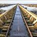 Moerputtenbrug / Moerputten bridge