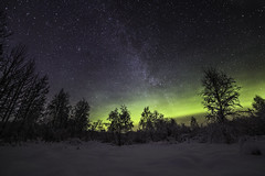 Winter landscape with auroras and a hint of Milky Way (Leksa87) Tags: canon eos 6d landscape aurora northern lights stars night sky milky way astrophotography winter snow trees samyang 14mm