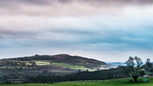 Wales Christmas 2016-3