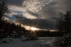 Back Yard Splendor (SueZinVT) Tags: sunset snow sky vermont silhouettes clouds