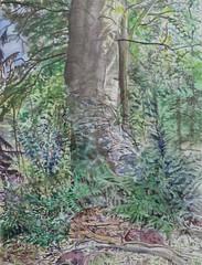 Toine Moerbeek - Struikgewas (2016) (Elisa1880) Tags: hollandse aquarellistenkring den haag the hague nederland netherlands pulchri studio toine moerbeek struikgewas