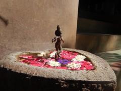The Legend Kuchipudi Dancer Dr. Vyjayanthi Kashi's Shambhavi School of Dance Outside Photography By Chinmaya M.Rao  (4)