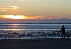 6956 Sunrise walk (Andy - Busyyyyyyyyy) Tags: 20170113 bbb beach ddd dog female fff kent lady lll romneysands sand sea silhouette sss sunrise walking woman www