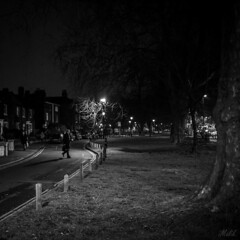 Project 365; #39 (iMalik1) Tags: project365 oneimageaday onepicaday onepictureaday onephotoaday onephotographaday photographoftheday photooftheday picoftheday pictureoftheday imageoftheday black white day blackandwhiteoftheday bw photo challenge photochallenge bwoftheday squarecrop square crop image trees road cars walking home time going after work night street lamps lights lampposts lamposts urban landscape photography imalik canon eos m3 canoneosm3 mycanon canonuk canonphotos seetheworldthroughmyeyes myworldmylens ealing local photographer