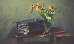 Passages (charhedman - off for a few days) Tags: books alteredbooks iliketotakeoldbooksandturnthemintoart tulips table sunlight crystalvase lavendersachetfromnatalie teakwoodtable stilllife textures