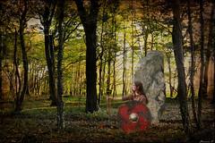 L'esprit du roi oublié ... Commios (florence.V) Tags: france hautsdefrance pasdecalais 62 artois olhain forêt parcdolhain atrébates commios roidesatrébates photoshop petitdelire texture musicphoto