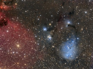 IC 447/446/2169 + NGC 2247/2245 - The Blue Tadpole?