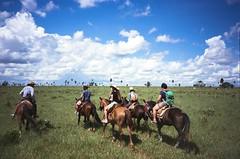 Recanto Ecolgico Rio da Prata (hiphopmilk) Tags: ranch brazil horse film rio analog america 35mm lomo lca lomography fuji farm south bonito meadow riding da analogue horseback prata recanto ecolgico 135film jaredyeh hiphopmilk