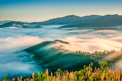 Foggy Valley Parrot Peak.jpg (dutchy_42) Tags: longexposure fog landscape bright australia highcountry northeastvictoria bucklandvalley nex6