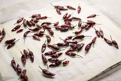 Getrocknete Aci Biber-Chilis (4) (blumenbiene) Tags: chili chilli chillie chilie plant pflanze garten garden pepper fruits früchte schote schoten peppers getrocknet trocknen dried drying aci biber