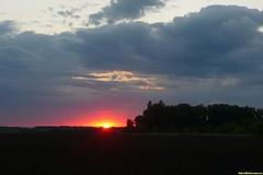 Немного плутаем в полях в лучах вечернего солнца. То ли ливанет, то ли нет, вот в чем вопрос!