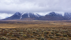 the beauty of Iceland's volcanic wilderness(es) (lunaryuna) Tags: iceland northiceland landscape barrenwilderness frombloenduostohomavik ontheroad roadtrip mountainrange snowcappedmountains wilderness hraun hreppur oldlavafields homestead farm solitude lunaryuna