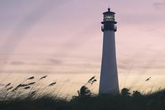 Cape Florida Lighthouse (EasyandMe(新手上路中~)) Tags: florida miami key biscayne billbaggs statepark park lighthouse sunset sky keywest light beach island