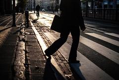 impulse (ewitsoe) Tags: ewitsoe nikon poland poznan shadow man walking crosswalk cross lines perspective bike bicycle