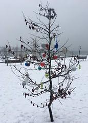 (SandraW12) Tags: englishbay vancouver snow snowman xmastree charilebrown