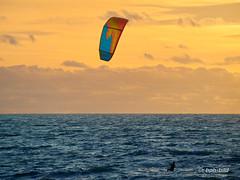 Audresselles - Kite Surfing