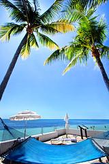 Blue Sky Breezes (Phil~Koch) Tags: keywest florida blue sky hammock shore palmtrees beach ocean water travel vacation leisure relax peace
