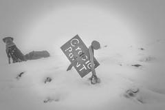 Gracie Point (johnwporter) Tags: hiking scramble mountains easternwashington centralwashington washington desert yakimariver canyon yakimaskylineridge labrador blacklab yellowlab pnw upperleftusa northwestisbest 徒步 爬行 山 華盛頓東部 華盛頓中部 華盛頓州 荒漠 雅基馬河 峽谷 雅基馬天際線脊 拉布拉多 黑拉不拉多 黃拉不拉多 太平洋西北部 美國左上角 西北部最好 atx116prodx tokinaaf1116mmf28 wideangle wideanglelens 廣角 廣角鏡