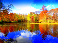 Lake Reflection (dimaruss34) Tags: newyork brooklyn dmitriyfomenko image sky clouds prospectpark foliage reflection autumn fall