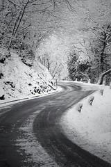 The Winter road... (Alex Switzerland) Tags: snow winter outdoor esterno inverno hiver neve snowfall nevicata switzerland lugano luganese wood bosco tree albero canon eos 6d