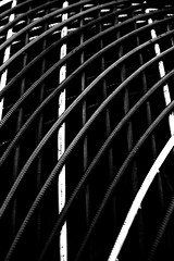 Tubes (H&T PhotoWalks) Tags: tubes bw blackwhite blackandwhite pattern abstract shapes canoneos400d sigma18250 cartagena murcia spain tan kodalith filter monochrome x14