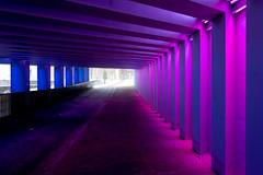 _DSC2665 (durr-architect) Tags: tunnel vision herman kuijer light installation dutch underpass zutphen netherlands architecture art designer artist colourful luminescent motorists cyclists pedestrians time space kcap baljon baauw royal haskoning dhv bam prorail train railway
