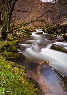 Alba river