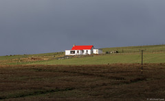 Red roof - white house; Toft Voe, Shetland Islands (Michael Leek Photography) Tags: house red redroof michaelleek shetland shetlandisland shetlandislands shetlands architecture remote winter northernisles michaelleekphotography landscape wildlandscape sunlight sun vibrant white whitehouse shadow building buildings