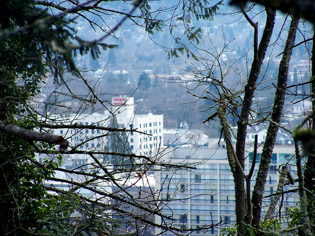 Looking over Eugene 4