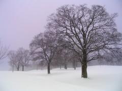 February Storm