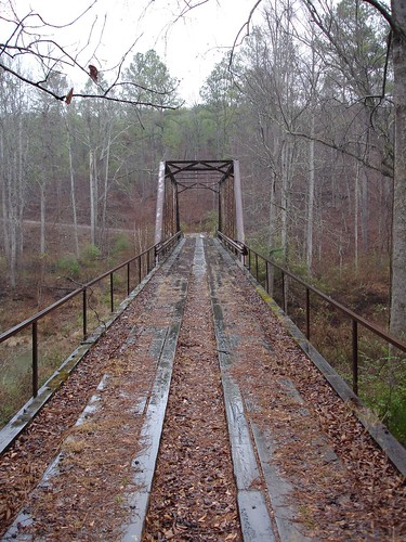 Steel Bridge (no longer in use), Winston County AL