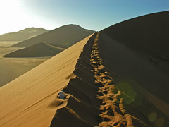 dune 45 (trAvelpig) Tags: africa morning hot topf25 sand desert dune tracks ridge photodomino tired lensflare flare afterclass namibia dne wste livingstone sossusvlei coolpix8800 heiss shortlegs dune45 livi travelpig ineedabreak travelpiginterestingness twostepsforwardandthreestepsback halfwayup perspectivesleadinglines winnerflickrsweeklythemecontest photodomino266 photodomino466 afterclassnaturallight