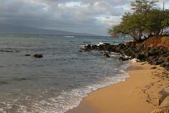 hawaii-2006-02-04-157