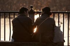 Couple (mrhayata) Tags: park sunset silhouette japan geotagged tokyo pond couple ueno 日本 シルエット shinobazu カップル mrhayata geo:lat=357101064 geo:lon=1397724464