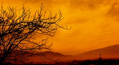 Before the storm (... Arjun) Tags: 15fav panorama india mountain storm tree by squall 1025fav 510fav nikon bravo asia searchthebest or bare branches hurricane explosion d70s snowstorm 2006 before rage panoramic gale already stamp 1870mmf3545g 2550fav 500v50f valley 50100fav stunning rainstorm fv10 thunderstorm kashmir tempest 1000v100f stomp overlook blizzard tornado twigs thunder eruption jk typhoon formerly downpour fume previously outbreak facing outburst earlier orelse flareup otherwise inadvance rantandrave 84points mireasrealm priorto beforehand specnature bluelist previousto earlierthan soonerthan aheadof inthepast ratherthan morewillinglythan goangrily udhampur