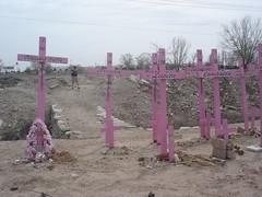 Las cruces (ChicanaFeliz) Tags: crosses cottonfield videotaping ciudadjuarez zulma muertasdejuarez algodonero womenofjuarez