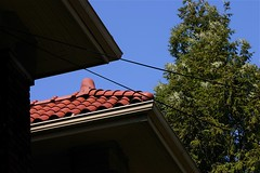 Tile Roof On A Spring Afternoon (mightyquinninwky) Tags: trees bluesky lexingtonky fayettecountyky fontaineroad