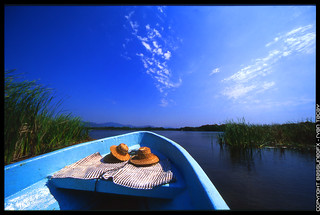 Lagoon Ride - Film