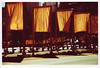 gates6 (thearnoswimmer) Tags: 2005 nyc trees newyork film crossprocessed centralpark saffron christo thegates gatesmemory