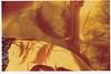 gates3 (thearnoswimmer) Tags: 2005 nyc trees newyork film crossprocessed centralpark saffron christo thegates gatesmemory