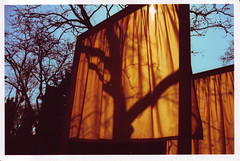 gates2 (thearnoswimmer) Tags: 2005 nyc newyork film crossprocessed centralpark saffron christo thegates gatesmemory