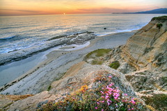 Tonality (jurvetson) Tags: ocean sunset beach topf25 happy bravo warm glow creativecommons wildflowers halfmoonbay hdr bluff hmb photomatix tonemap