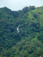 Corregimiento de Palermo, Támesis, Antioquia (Luis G. Restrepo) Tags: p1170797 támesis antioquia colombia southamerica cascada