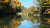 Herbst an der Freistritz (Dioscorea Mexicana) Tags: feistriz fluss kanu herbst spiegelung
