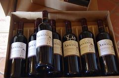 Bergerac, vignoble, 10/2016 (jlfaurie) Tags: bergerac cave vignoble wine vin vino finca ferme viticole barrique barrels tonneaux cuves dordogne périgord aquitaine aquitania juline de savignac latourarmand
